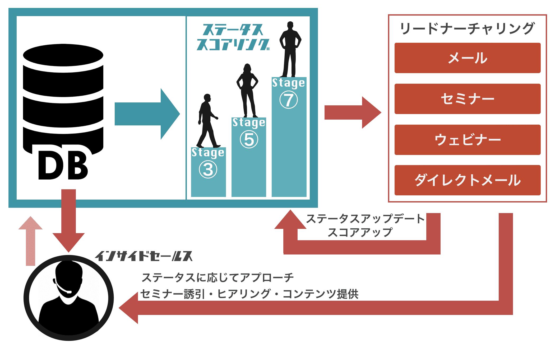 hajimari リードナーチャリング